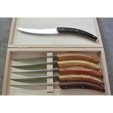 Coffret 6 couteaux styl'ver plein manche bois assortis