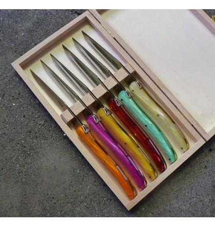 Coffret 6 couteaux Laguiole plein manche acrylique couleur