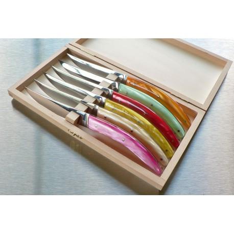 Coffret 6 couteaux styl'ver plein manche acrylique assortis