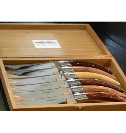 Coffret 6 couteaux styl'ver bois assortis
