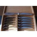 Coffret 6 couteaux à poisson thiers tout inox sablé